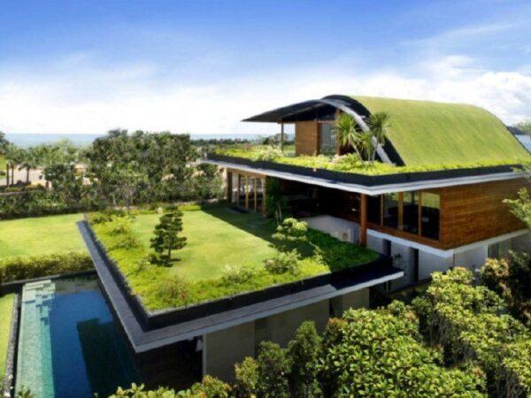 Zelena streha – Vse kar morate vedeti